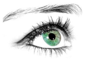 yoga de la vue